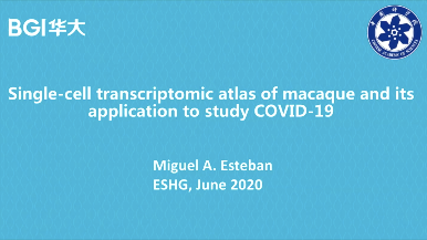 ESHG | Single-cell transcriptomic atlas of macaque and its application to study COVID-19